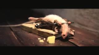 Английская Реклама Сыра1(, 2014-01-30T12:40:03.000Z)