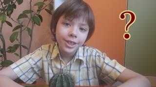 Почему КАКТУС НЕ ЦВЕТЕТ, что делать? 🔴 Как ухаживать за кактусом дома чтобы он зацвёл- Уход