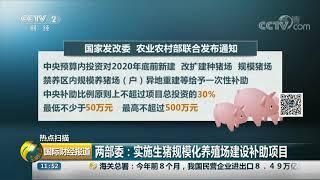 [国际财经报道]热点扫描 两部委:实施生猪规模化养殖场建设补助项目| CCTV财经