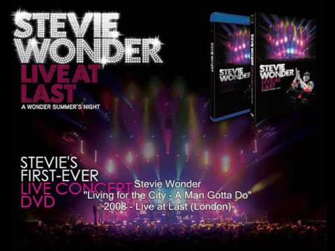 Stevie Wonder - Living for the City - A Man Gotta Do (Live At Last)