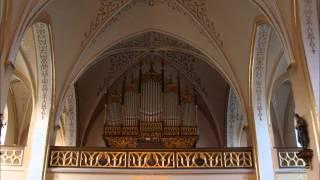 polish organ music - polnische Orgelmusik - M. Surzynski - Toccata fis-moll op. 36