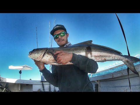 Mackay Fishing - Insane Day Jigging The Shoals - Cobia, Trevally, Giant Herring, Golden - EP 9