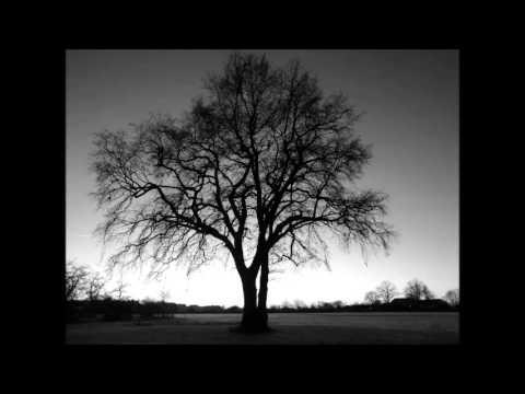 "Fly ""Intouchables"" - Ludovico Einaudi"
