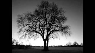 "Fly ""Intouchables"" - Ludovico Einaudi thumbnail"