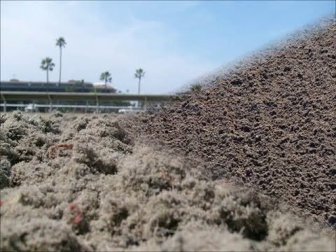 Racehorse Track Maintenance Procedures (for Dirt & Synthetic)