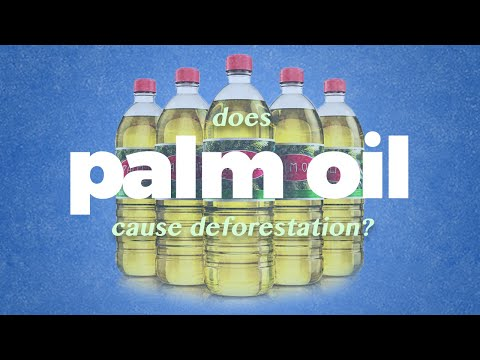 The Real Problem With Palm Oil.