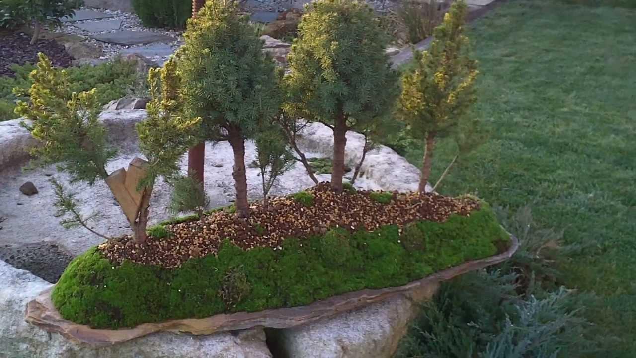 Jard n japon s 7 youtube for Jardines japoneses en miniatura
