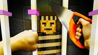 REALISTIC MINECRAFT - STEVE BREAKS INTO PRISON!