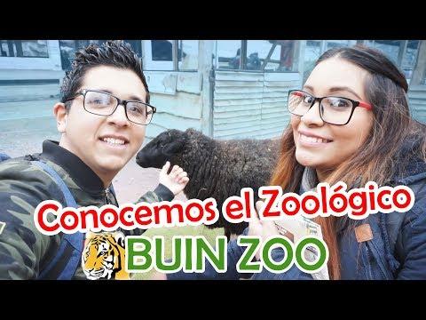 De paseo por el Zoológico Buin Zoo Chile 2018 - Qué aventura!!!!