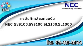 FourStarNetwork Thailand - ViYoutube