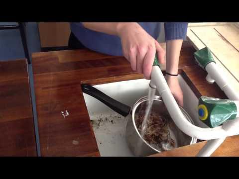 Carrageen moss and it's medicinal benefits !