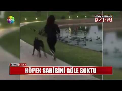 Köpek Sahibini Göle Soktu