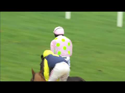 Racing Highlights Punchestown 9 Decemer 2018