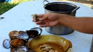видео Мідії рецепт - як приготувати в мушлях -