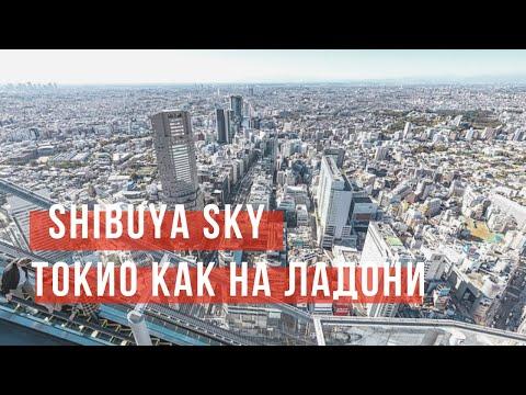 ТОКИО - СМОТРОВАЯ ПЛОЩАДКА SHIBUYA SKY ӏ КУДА ПОЙТИ В ТОКИО? ӏ TOKYO TATAMI
