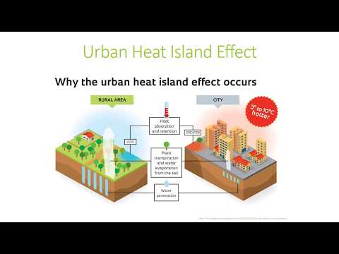 Urban Heat Island Effect: What neighborhoods are vulnerable?