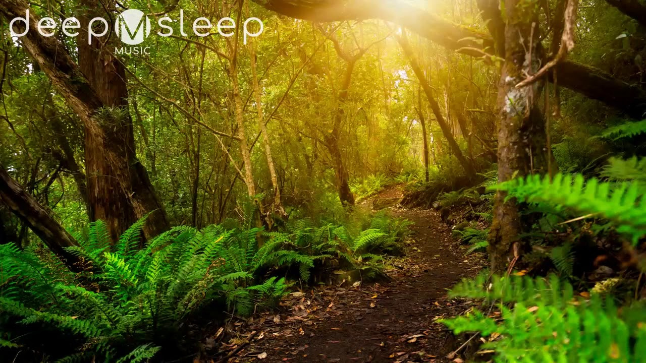 11:11 Deep Sleep Music - Fall Asleep in 11:11 With Synchronizing Beats