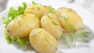 История картофеля | От индейцев до наших дней | Первые рецепты