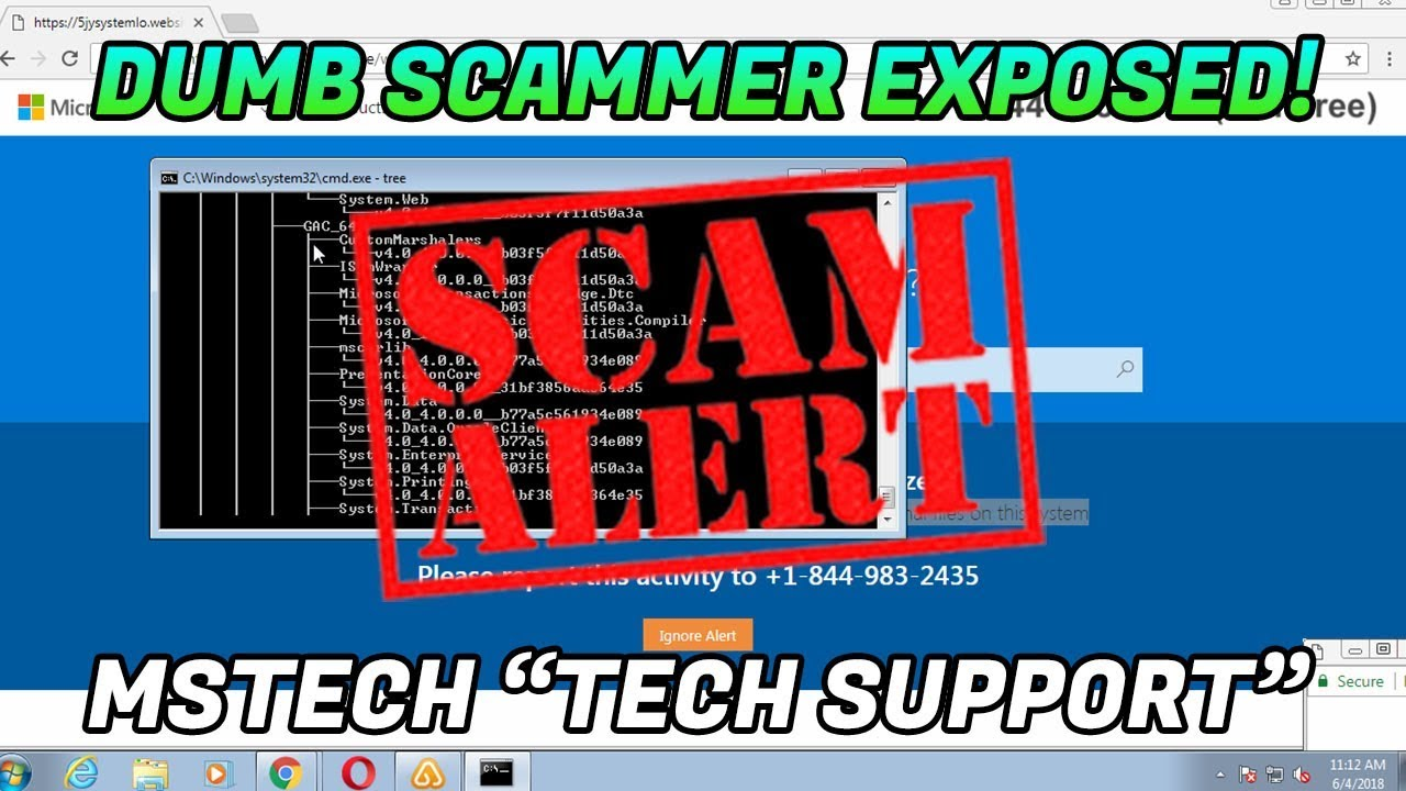 Tech Support Scam / Scammer website found! - 1-855-566-7666 -  www msnetworksupport com