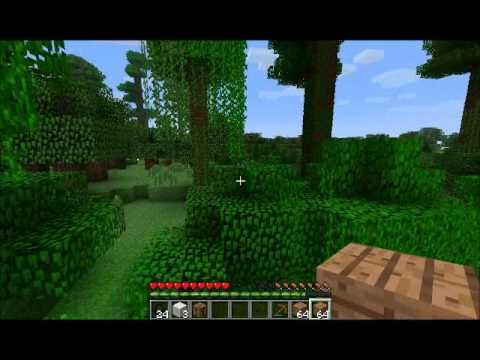 Burak Minecraft'da Bölüm 1 - Burak Oyunda 2