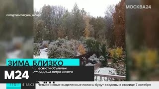 Смотреть видео Желтый уровень опасности объявлен в Москве - Москва 24 онлайн