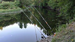 РЫБАЛКА НА ЗАКИДУШКИ Рыбачу и ночую один на реке Костёр сало чай