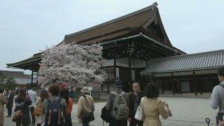 京都市上京区にある京都御所で3日、恒例の春の一般公開が始まり、曇り...