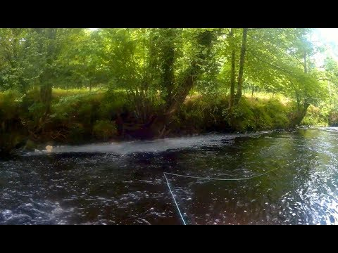 Sea Trout on the Wet Fly - River Roe