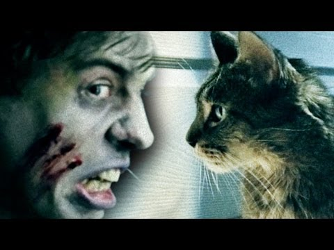 Cats vs Zombies - Feeding Your Cat In The Zombie Apocalypse