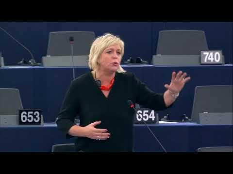 Hilde Vautmans 14 Nov 2017 plenary speech on EU Africa Strategy