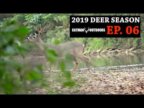 BIG BUCK in the Creek! Early Season Bowhunting - 2019 Deer Season, Ep. 06