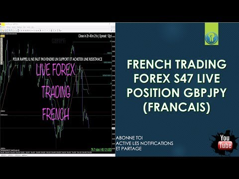 Forex trading franch comany