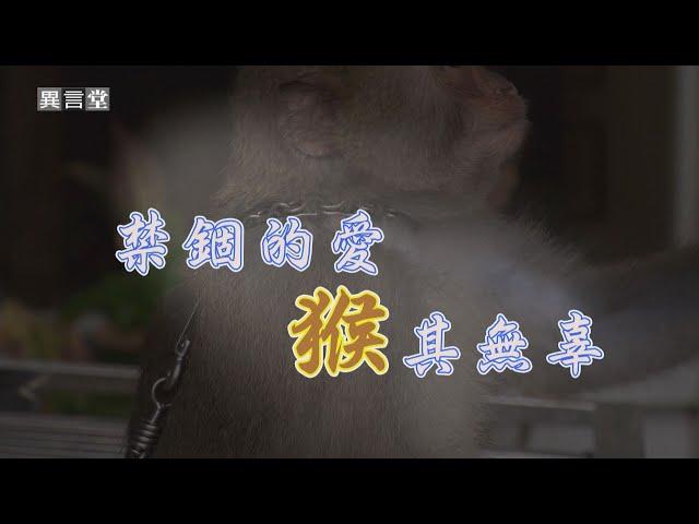 【民視異言堂】禁錮的愛,「猴」其無辜