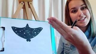 Virtual Class: Artful Learning Spotted Eagle Ray Drawing