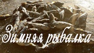 Зимняя рыбалка на ротана 2015-16