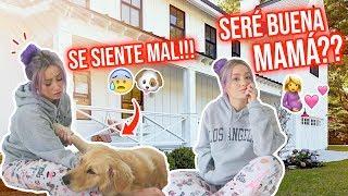 SERÉ BUENA MAMÁ?!🤰🏼💕 | 04 Mar 2020