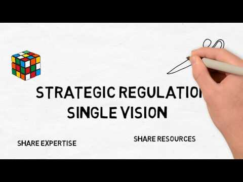 Strategic Regulation 2017