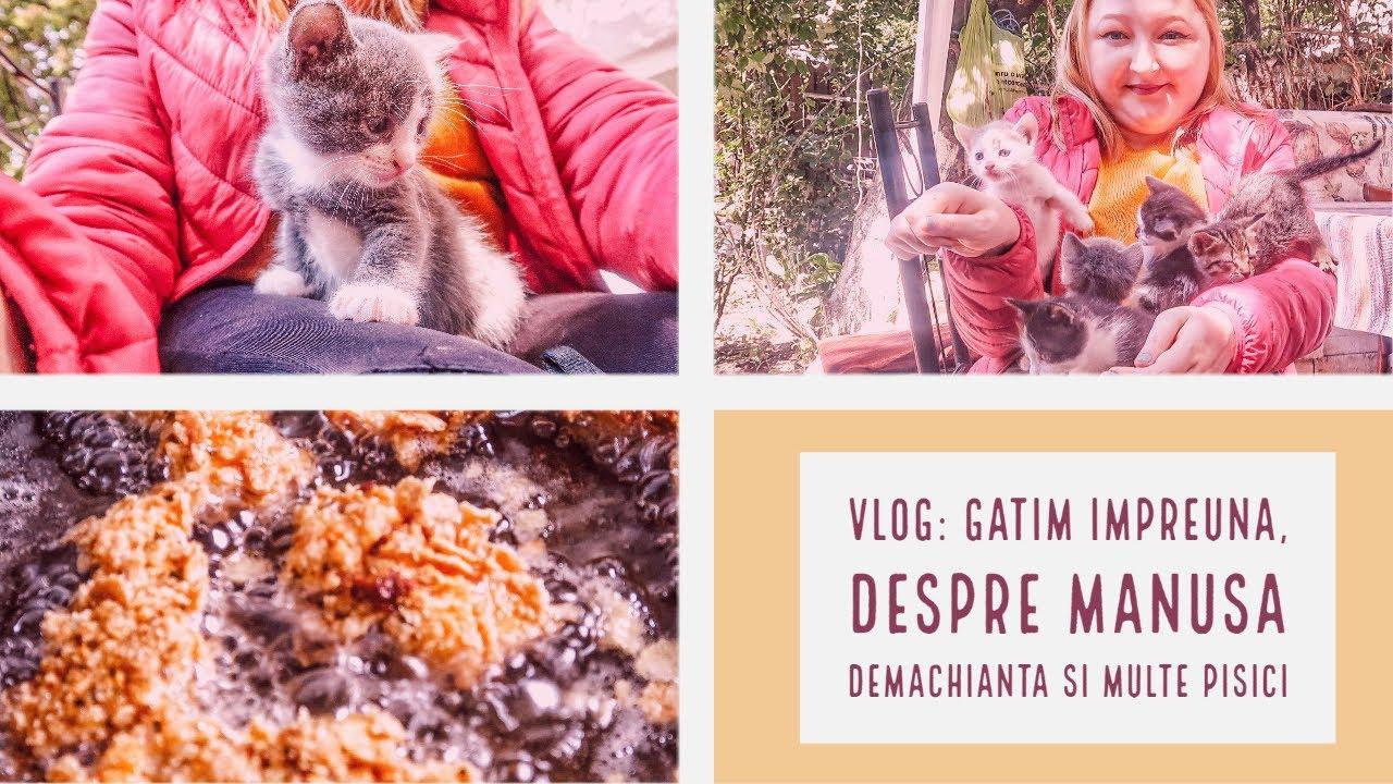 VLOG: Gatim impreuna, despre manusa demachianta si multe pisici