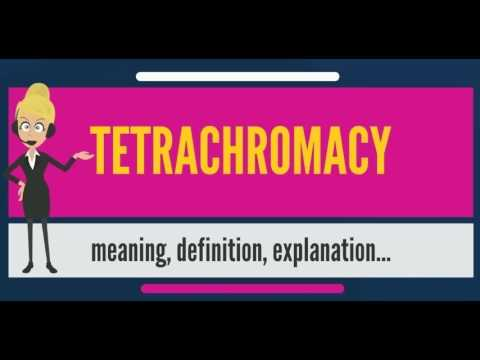 What is TETRACHROMACY? What does TETRACHROMACY mean? TETRACHROMACY meaning & definition