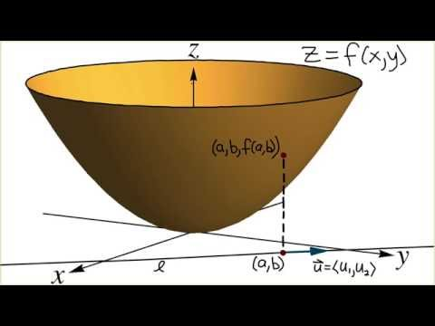 Directional Derivatives and the Gradient