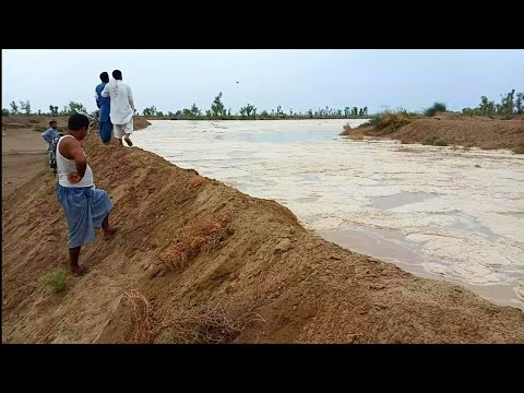 Very Dangerous Flash Flood In Punjab Village, Pakistan