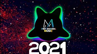 New Years Party EDM Mix Song 2021-best Elections house & Future EDM house | ProMusics Release |