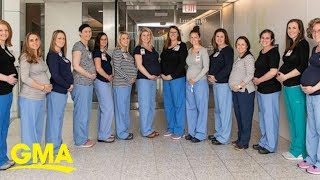 14 nurses in 1 hospital oncology unit are pregnant at the same time