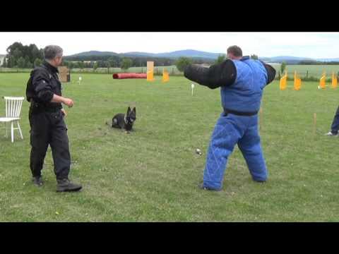 Ukázka policie ČR