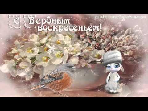 ZOOBE зайка Поздравление С Вербным Воскресеньем ! - Простые вкусные домашние видео рецепты блюд