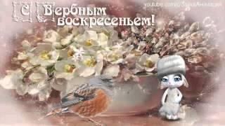 ZOOBE зайка Поздравление С Вербным Воскресеньем !