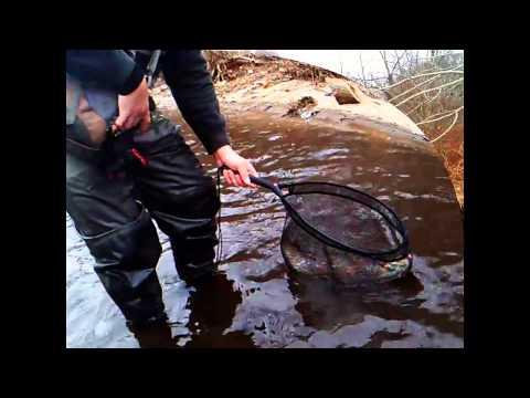 Winter Fishing On The Naugatuck River (PCut)