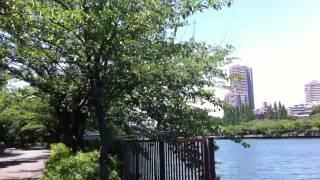 Osaka City - Places To Go On A Bike. Pt. 3