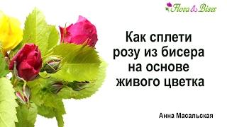 Как сплести розу из бисера на основе живого цветка