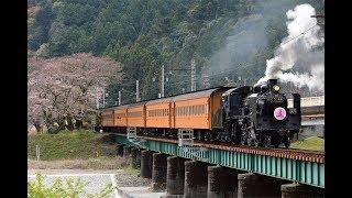 2019-03-29 大井川鐡道 SL急行 さくら号